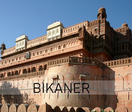 bikaner wedding venue
