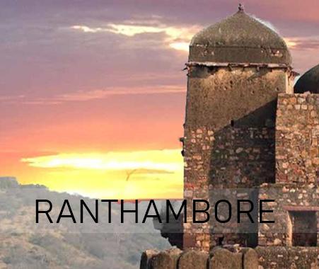 ranthamborefort